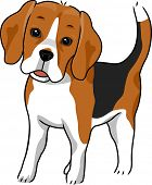 picture of foxhound  - Illustration Featuring a Cute and Curious Beagle - JPG