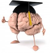 Постер, плакат: Студенческие мозга