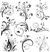 image of floral design  - Lots of different designs of floral style elements - JPG