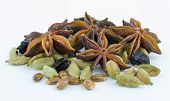 picture of barberry  - star anise  - JPG
