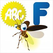 pic of fireflies  - F is for Firefly - JPG