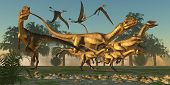 foto of dilophosaurus  - A pack of Dilophosaurus are beginning their hunt for prey as flying Dorygnathus pterosaurs follow along - JPG