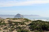 pic of pch  - Beach and rock at Morro Bay in California - JPG