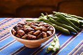 Постер, плакат: Bolivian Roasted Habas Fava Beans
