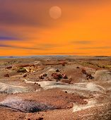 image of petrified  - Sunset scenic landscape of ancient petrified forest - JPG