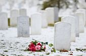 pic of arlington cemetery  - Tombstones in snow  - JPG