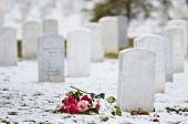 stock photo of arlington cemetery  - Tombstones in snow  - JPG