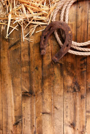 picture of horseshoe  - American West still life with old horseshoe and cowboy lasso - JPG