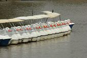 picture of pedal  - the line of duck pedal boats in the park