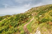 pic of st ives  - Stunning cornish coast path along the rocky scenery from st ives to zennor in cornwall england uk - JPG