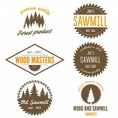 image of carpentry  - Set of logo and logotype elements for sawmill - JPG