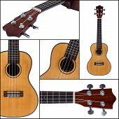 image of ukulele  - Ukulele guitar isolated on white background collage - JPG