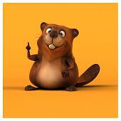 pic of beaver  - Fun beaver - JPG