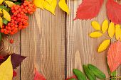 stock photo of rowan berry  - Autumn leaves and rowan berries over wood background with copy space - JPG