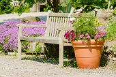 stock photo of flower pots  - Unpainted wooden bench with a flower pot full of fine flowers to its side - JPG
