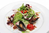 Salad - Crabmeats, musses and cherry tomatoes sauce