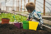 Planet Protection. Planet Protection By Growing Flowers. Small Boy Fight For Planet Protection. Plan poster