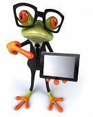 pic of amazonian frog  - Frog and glasses - JPG