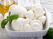 variety of italian buffalo mozzarella