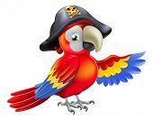 picture of skull cross bones  - A cartoon pirate parrot character with an eye patch and tricorn hat with skull and cross bones pointing with its wing - JPG