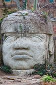 foto of stone sculpture  - Head carved from stone     Save to a lightbox  - JPG