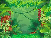 stock photo of jungle exotic  - Vector illustration of an exotic tropical forest - JPG