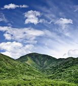 image of gatlinburg  - Summer landscape in the Smoky Mountains near Gatlinburg - JPG