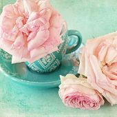 foto of rosa  - Beautiful fresh pink roses in a cup on a blue background  - JPG