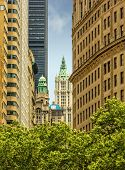stock photo of tree lined street  - High rise buildings in lower Manhattan along tree lined street in New York City New York USA - JPG