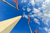stock photo of washington monument  - US flags encircling  Washington Monument  - JPG