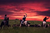 image of herd horses  - Three cowboys drive herd of horses on a sunset - JPG