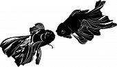 picture of koi tattoo  - nature koi goldfish carp vector silhouette black - JPG