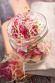 picture of soybean sprouts  - sprouts salad - JPG