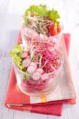 foto of soybean sprouts  - sprouts salad - JPG