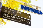 image of tree lined street  - Garosugil Street Sign - JPG