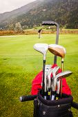 pic of golf bag  - a wheeled golf bag full of golf clubs of a vibrant golf course - JPG