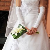 picture of debonair  - bride wearing wedding dress and holding bouquet - JPG