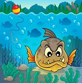 picture of piranha  - Piranha fish underwater theme 4  - JPG