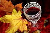 picture of beechnut  - Vintage red wine glass and bottle with fall leaves and beechnuts - JPG