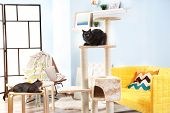 Cute cats and cat tree in modern room poster