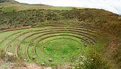 Inca Ancient Terraces poster