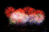 Colorful fireworks display. Shots taken on tripod with mirror lockup and shutter release cable to en