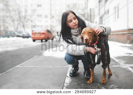 poster of Young Woman In Warm Clothes Sits On The Ground With A Dog And Adjusts The Collar On The Background O