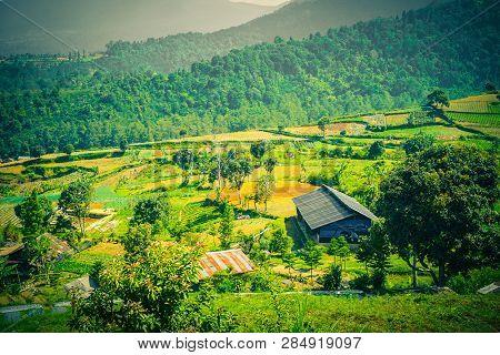 Beautiful Landscape Scene With Mountain