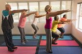 Side view of group of active senior people performing exercise on yoga mat at home poster