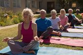 Front view of group of active senior people performing yoga in the park. They are sitting on yoga ma poster