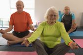 Front view of senior people doing yoga in position yoga in fitness studio poster
