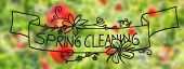 Sunny Poppy Flower, Spring, Calligraphy Spring Cleaning poster