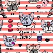Seamless Pattern French Bulldog. Striped Coral And White Color Background. Vector Black Hand Drawn.  poster