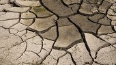 White Dried And Cracked Ground Earth Background, Close Up Of Dry Fissure Ground, Fracture Surface, W poster